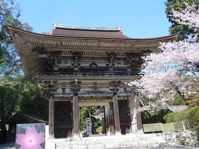 円城寺山門.jpg