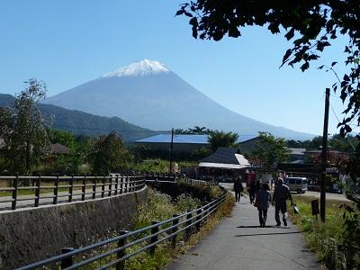 西湖根場から初冠雪の富士.jpg